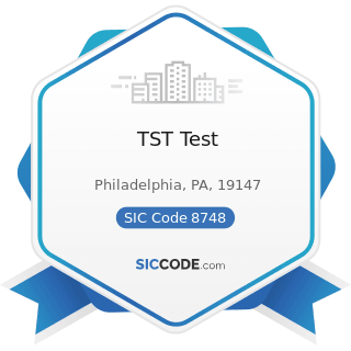 TST Test - SIC Code 8748 - Business Consulting Services, Not Elsewhere Classified