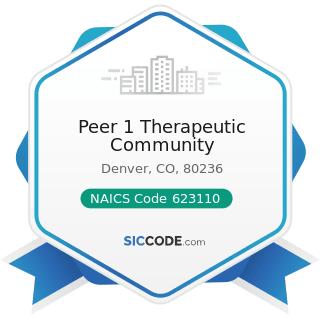 Peer 1 Therapeutic Community - NAICS Code 623110 - Nursing Care Facilities (Skilled Nursing...