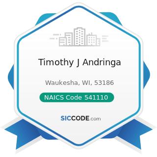 Timothy J Andringa - NAICS Code 541110 - Offices of Lawyers