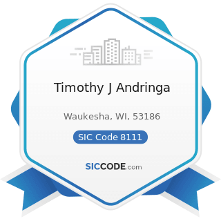 Timothy J Andringa - SIC Code 8111 - Legal Services