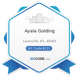 Ayala Golding - SIC Code 8111 - Legal Services