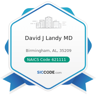 David J Landy MD - NAICS Code 621111 - Offices of Physicians (except Mental Health Specialists)