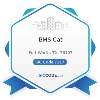 BMS Cat - SIC Code 7217 - Carpet and Upholstery Cleaning
