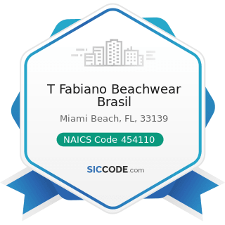 T Fabiano Beachwear Brasil - NAICS Code 454110 - Electronic Shopping and Mail-Order Houses