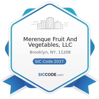 Merenque Fruit And Vegetables, LLC - SIC Code 2037 - Frozen Fruits, Fruit Juices, and Vegetables