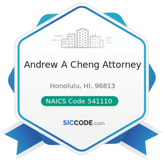 Andrew A Cheng Attorney - NAICS Code 541110 - Offices of Lawyers