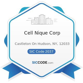 Cell Nique Corp - SIC Code 2037 - Frozen Fruits, Fruit Juices, and Vegetables