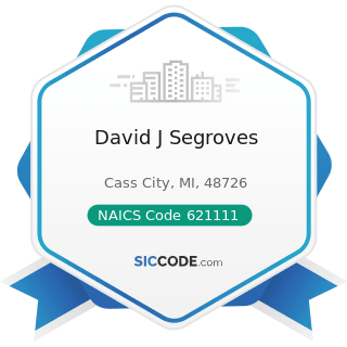 David J Segroves - NAICS Code 621111 - Offices of Physicians (except Mental Health Specialists)