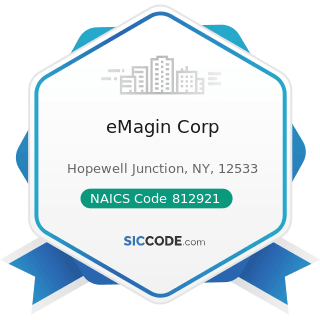 eMagin Corp - NAICS Code 812921 - Photofinishing Laboratories (except One-Hour)