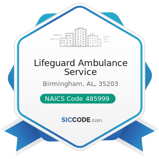 Lifeguard Ambulance Service - NAICS Code 485999 - All Other Transit and Ground Passenger...