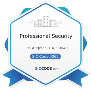 Professional Security - SIC Code 5065 - Electronic Parts and Equipment, Not Elsewhere Classified