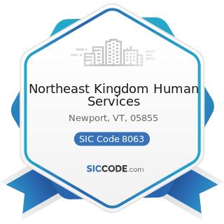 Northeast Kingdom Human Services - SIC Code 8063 - Psychiatric Hospitals