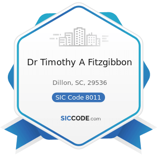 Dr Timothy A Fitzgibbon - SIC Code 8011 - Offices and Clinics of Doctors of Medicine