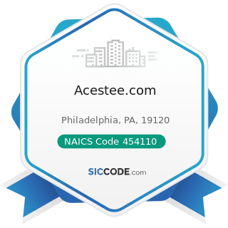 Acestee.com - NAICS Code 454110 - Electronic Shopping and Mail-Order Houses