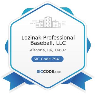 Lozinak Professional Baseball, LLC - SIC Code 7941 - Professional Sports Clubs and Promoters
