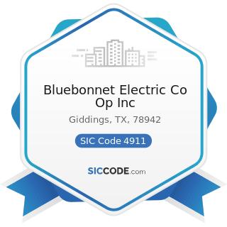 Bluebonnet Electric Co Op Inc - SIC Code 4911 - Electric Services