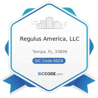 Regulus America, LLC - SIC Code 6029 - Commercial Banks, Not Elsewhere Classified