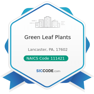 Green Leaf Plants - NAICS Code 111421 - Nursery and Tree Production