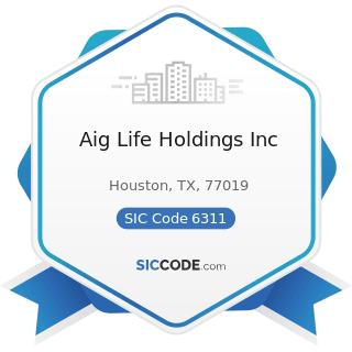 Aig Life Holdings Inc - SIC Code 6311 - Life Insurance